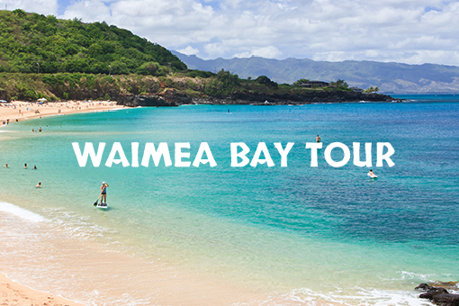 Kayak Tour Waimea Bay