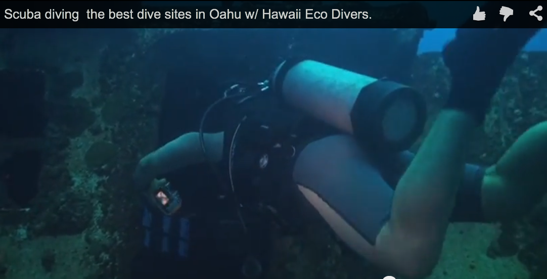 Scuba diving the best dive sites in Oahu
