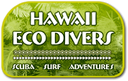 Oahu Scuba Diving: Boat and Shore Dive, Snorkel Adventures!