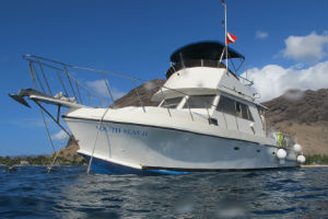 Boat charter for dive sites on Oahu with Hawaii Eco Divers