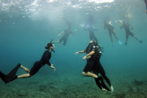 Apnea Training