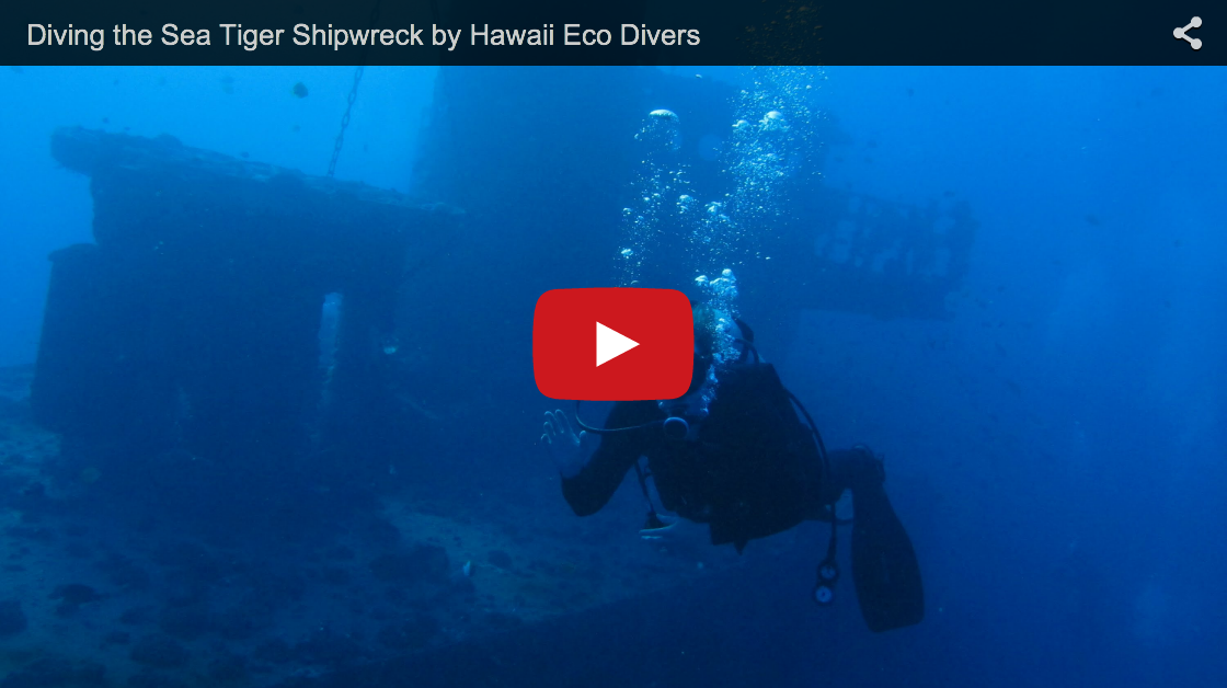 Diving the Sea Tiger Shipwreck
