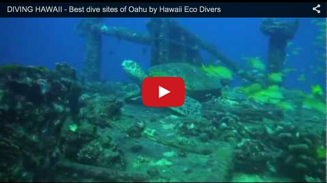 Best dive sites of Oahu