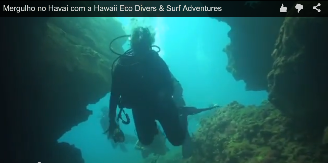 Mergulho no Havaí com a Hawaii Eco Divers & Surf Adventures