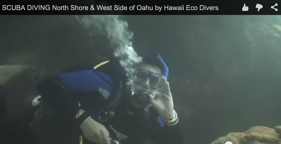 SCUBA DIVING North Shore & West Side of Oahu