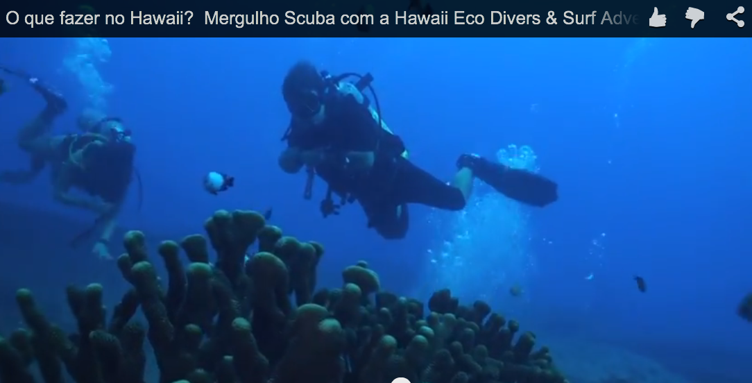 O que fazer no Hawaii? Mergulho Scuba com a Hawaii Eco Divers