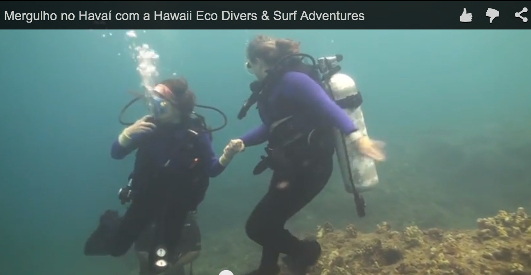 Mergulho no Havaí com a Hawaii Eco Divers