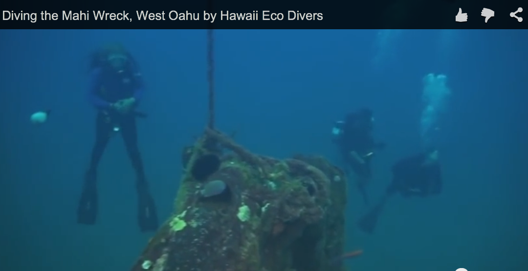 Diving the Mahi Wreck, West Oahu