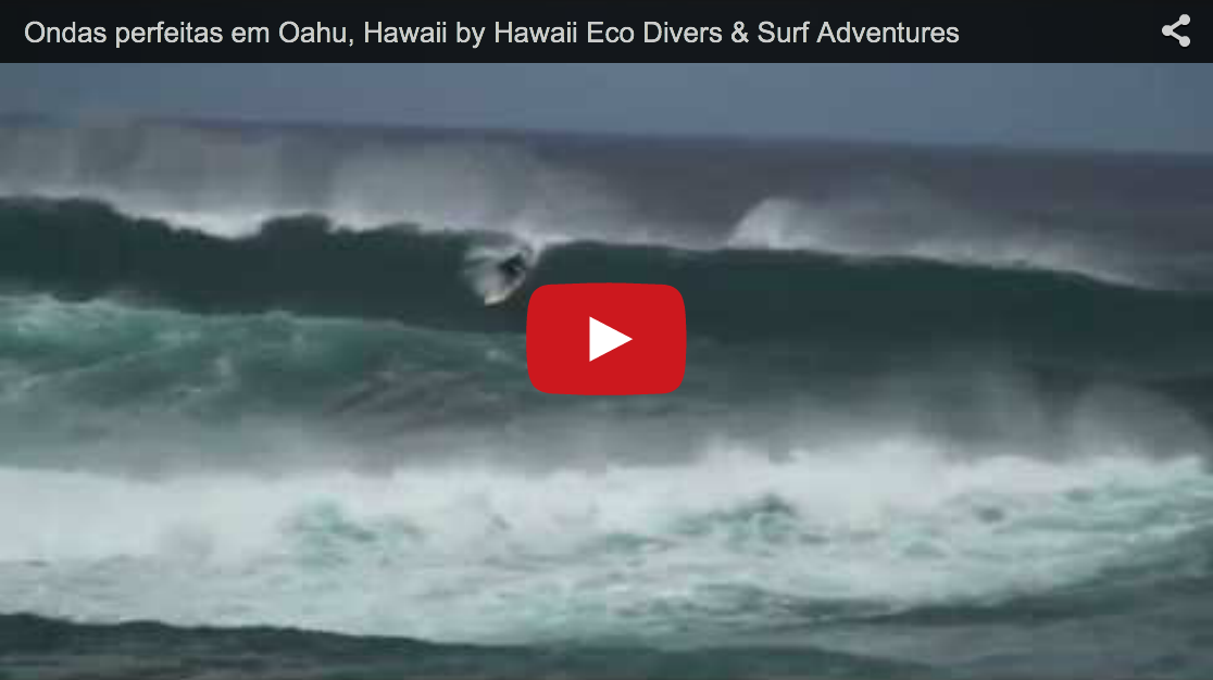 Ondas perfeitas em Oahu, Hawaii by Hawaii Eco Divers & Surf Adventures
