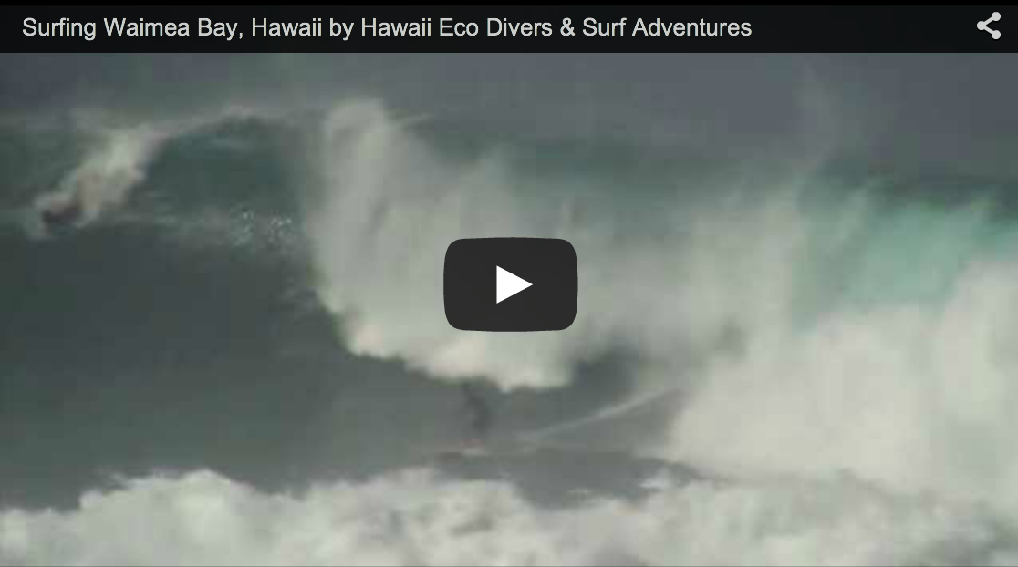 Surfing Waimea Bay, Hawaii by Hawaii Eco Divers & Surf Adventures
