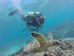Scuba diver at scuba dive site Oahu with sea turtle, Hawaii Eco Divers