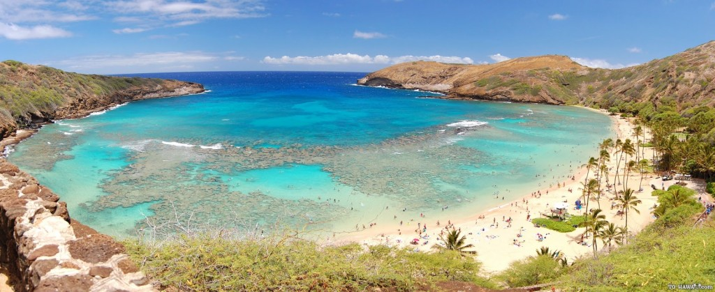 helicopter tours on oahu with Hanauma Bay Beach 2016 on Loihi also Ocean Joy Cruises as well Shark Encounter Wont Soon Forget likewise Hamakua Adventures Ride additionally 5 Natural Attractions Guaranteed To Give You An Adrenaline Rush.