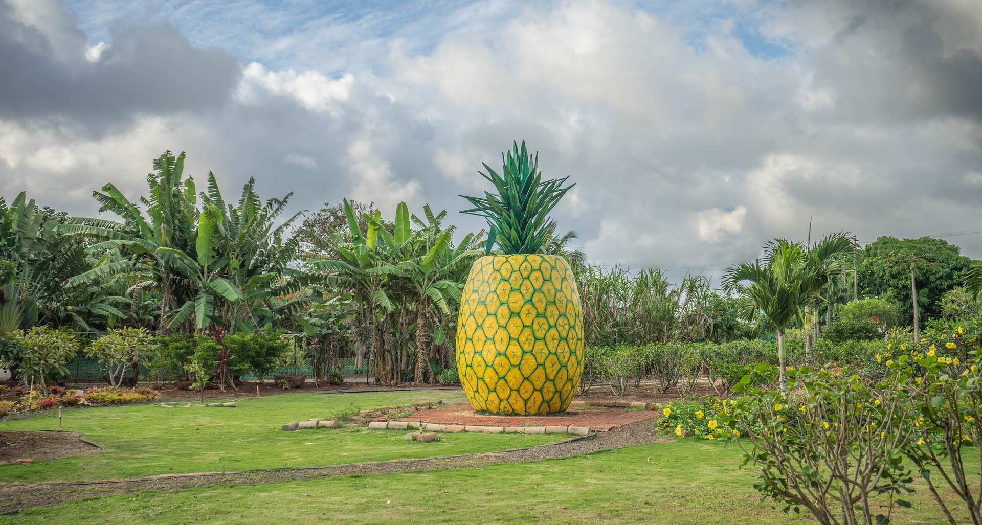 Family activities near Aulani list item three: the Dole Plantation