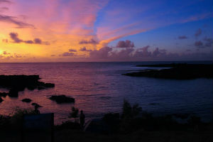 Night dive at dive spots on Oahu with Hawaii Eco Divers
