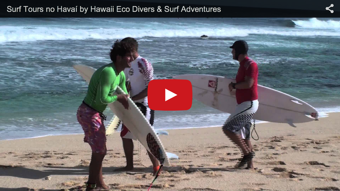 Surf Tours in Havaí