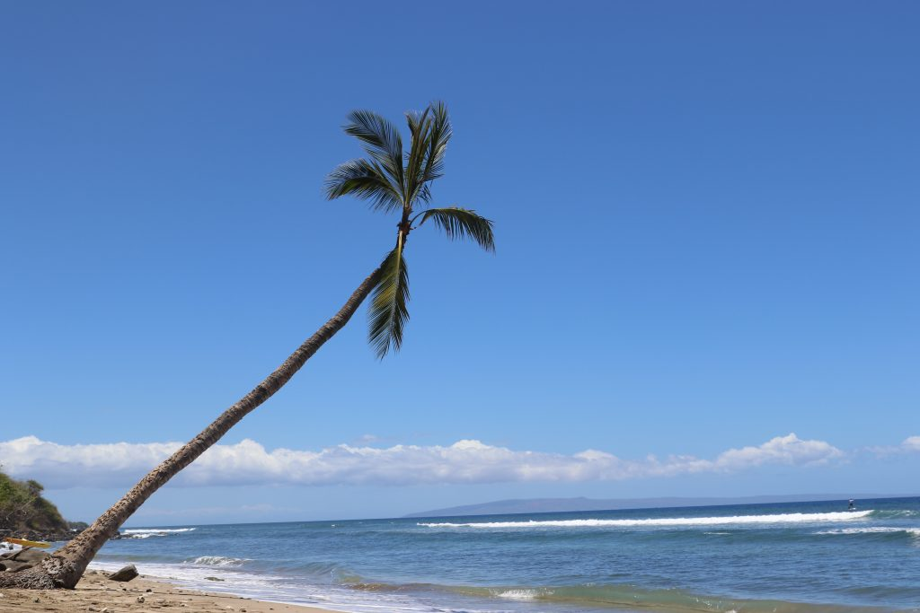 Maui: the best island in the world