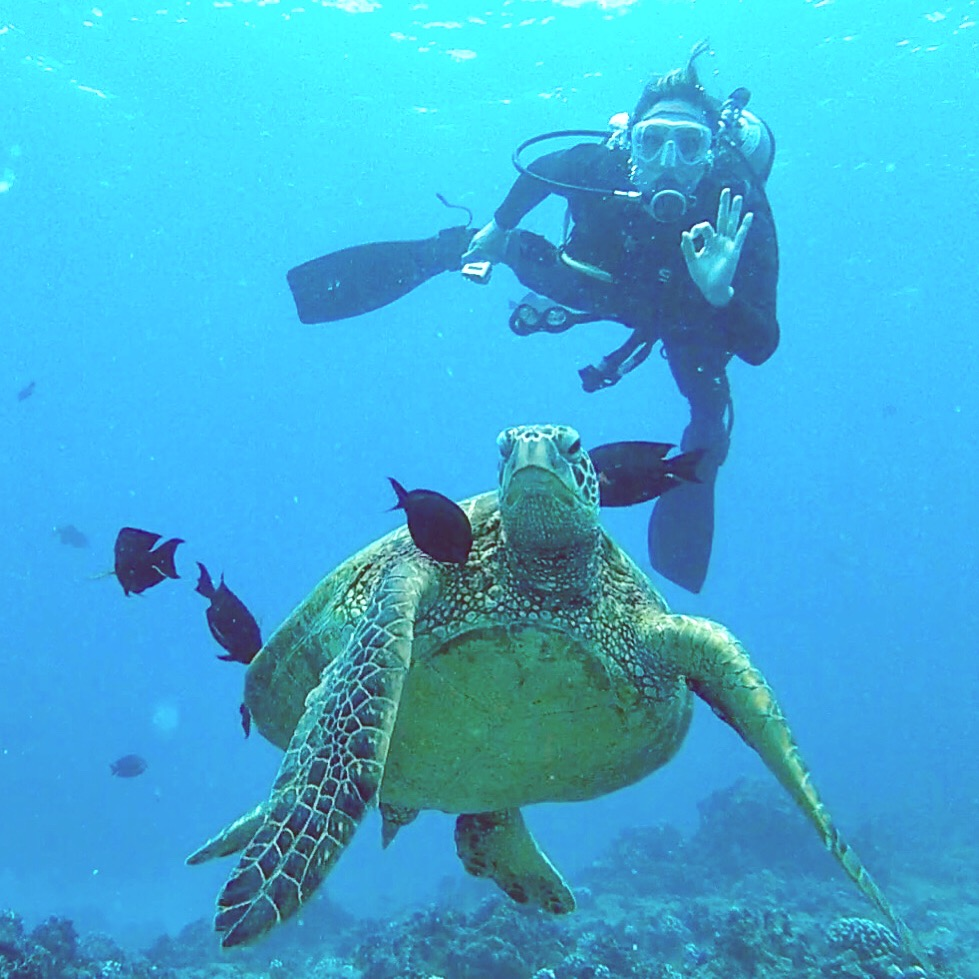 Top 5 Eco-Friendly Diving Tips in Hawaii