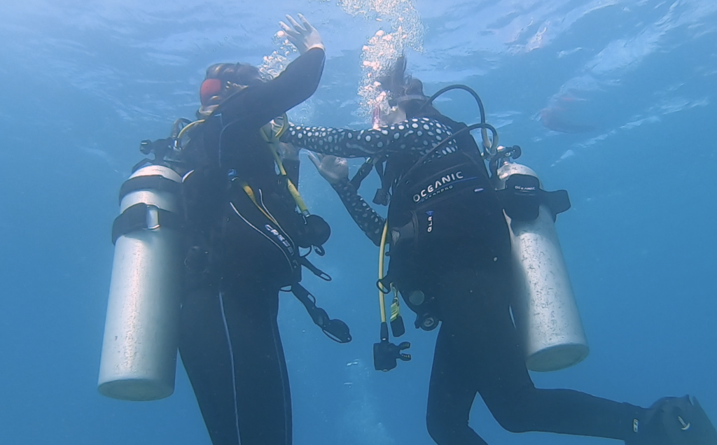 My Rescue Diving Course: E-Learning with Hawaii Eco Divers